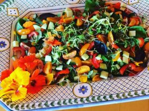 Salads, Katy Cox Chef